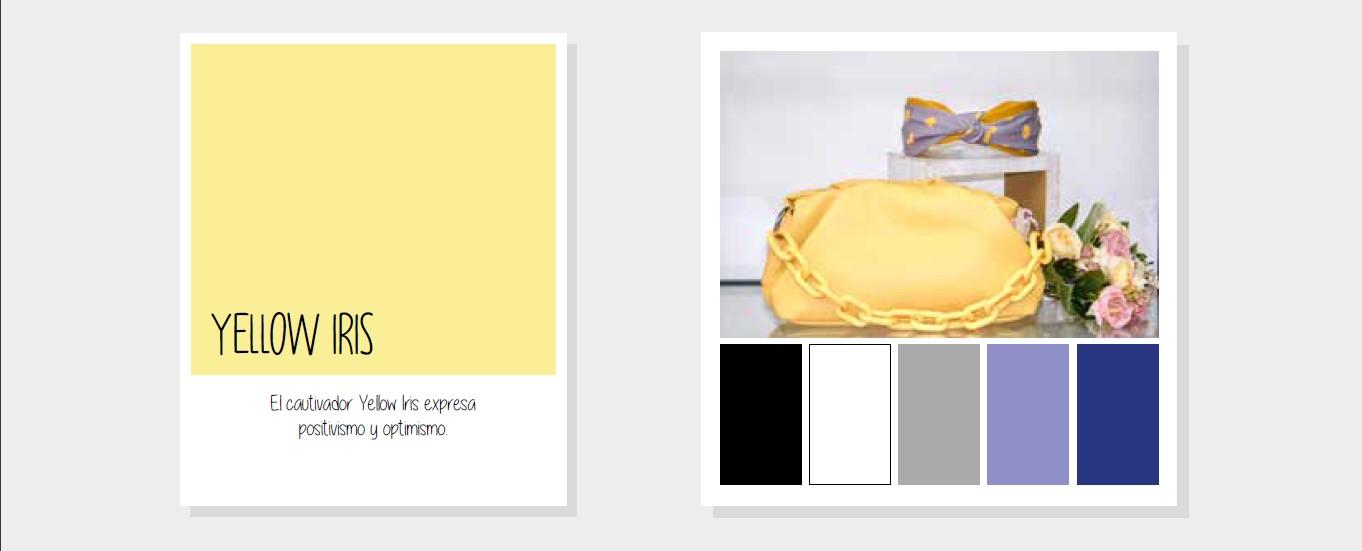 Yellow Iris Delys Complementos